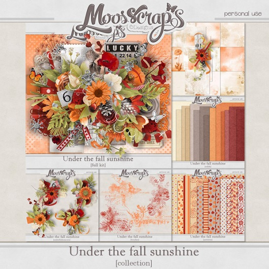 moos_underthefallsunshine_fp_preview